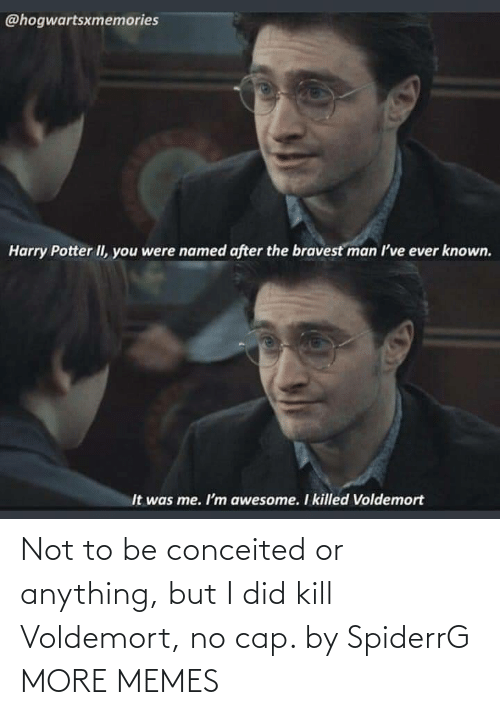 Anything But: Not to be conceited or anything, but I did kill Voldemort, no cap. by SpiderrG MORE MEMES