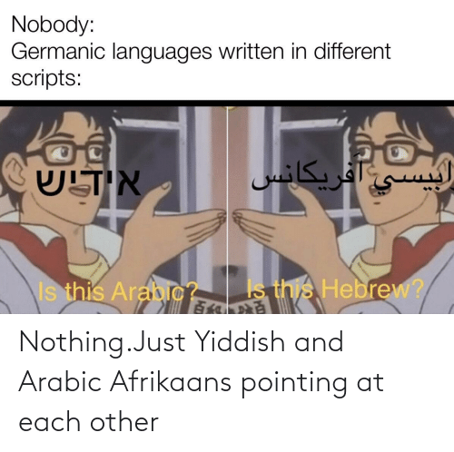 Arabic: Nothing.Just Yiddish and Arabic Afrikaans pointing at each other