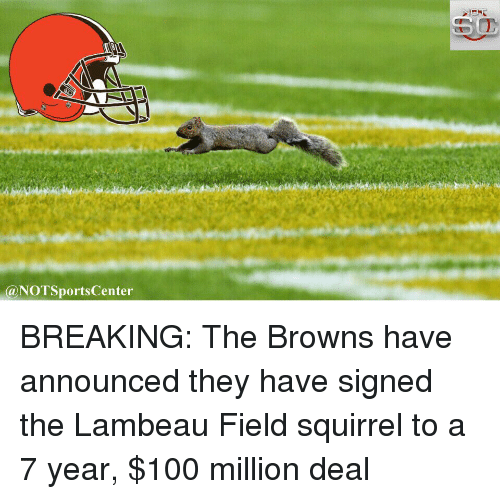 Sports, Break, and Browns: NOTSportsCenter BREAKING: The Browns have announced they have signed the Lambeau Field squirrel to a 7 year, $100 million deal