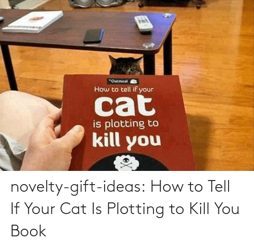 If Your: novelty-gift-ideas:  How to Tell If Your Cat Is Plotting to Kill You Book