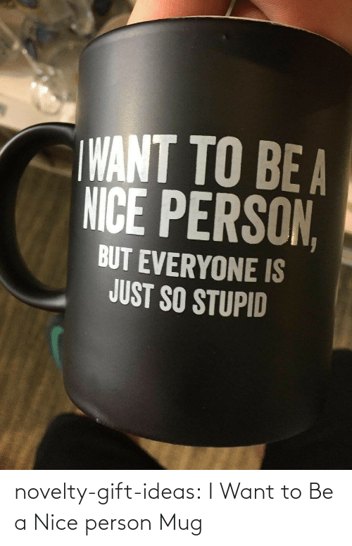 person: novelty-gift-ideas:  I Want to Be a Nice person Mug