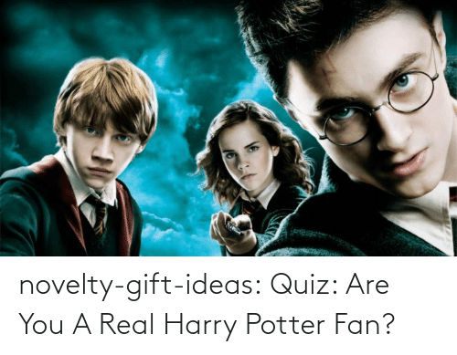 harry: novelty-gift-ideas:  Quiz: Are You A Real Harry Potter Fan?