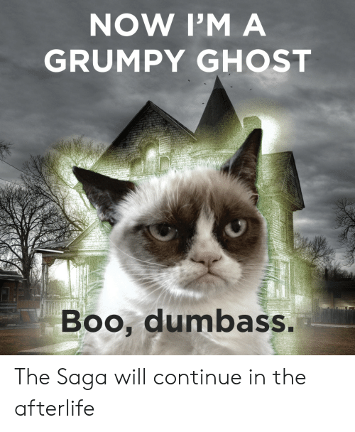 Boo, Ghost, and Saga: NOW I'M A  GRUMPY GHOST  Boo, dumbass The Saga will continue in the afterlife