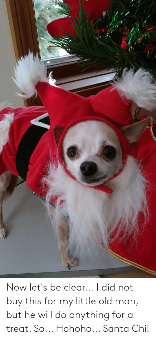 Hohoho: Now let's be clear... I did not buy this for my little old man, but he will do anything for a treat. So... Hohoho... Santa Chi!