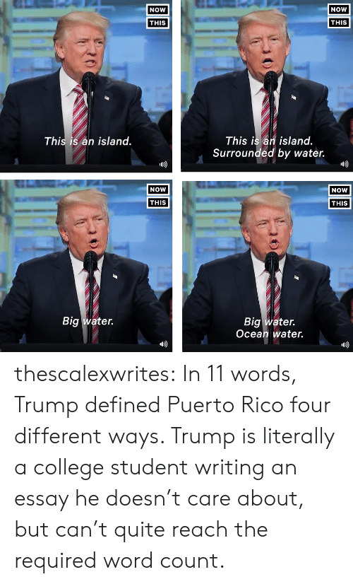 Writing An Essay: NOW  NOW  THIS  THIS  This is an island.  Surrounded by water.  This is an island.  b)  D)  NOW  NOW  THIS  THIS  Big water.  Big water.  Ocean water.  D) thescalexwrites: In 11 words, Trump defined Puerto Rico four different ways. Trump is literally a college student writing an essay he doesn't care about, but can't quite reach the required word count.