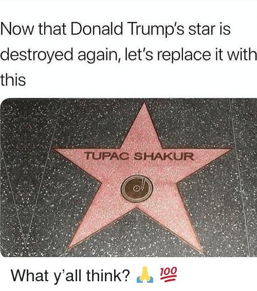 Tupac Shakur: Now that Donald Trump's star is  destroyed again, let's replace it with  this  TUPAC SHAKUR What y'all think? 🙏 💯