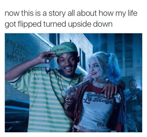 flipped: now this is a story all about how my life  got flipped turned upside down