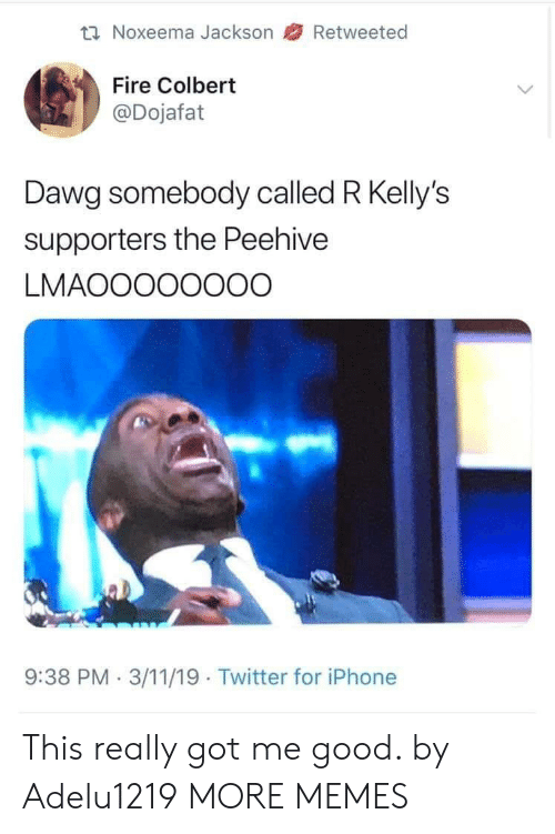 Dank, Fire, and Iphone: Noxeema Jackson 47 Retweeted  Fire Colbert  @Dojafat  Dawg somebody called R Kelly's  supporters the Peehive  LMAOOOOOOOO  9:38 PM.3/11/19 Twitter for iPhone This really got me good. by Adelu1219 MORE MEMES