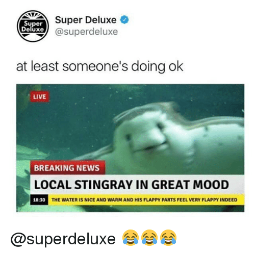 Greatful: NUDEAer Deluxe  xe@superdeluxe  Super  Deluxe  at least someone's doing ok  LIVE  BREAKING NEWS  LOCAL STINGRAY IN GREAT MOOD  18:30  THE WATER IS NICE AND WARM AND HIS FLAPPY PARTS FEEL VERY FLAPPY INDEED @superdeluxe 😂😂😂