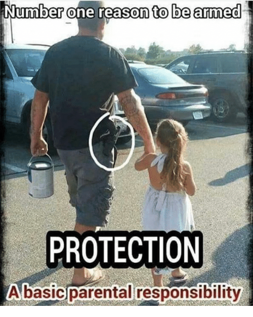 Memes, Reason, and Responsibility: Number one reason to be armed  PROTECTION  Abasic parental responsibility