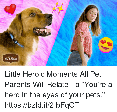 """Memes, Parents, and Pets: NUTRISH Little Heroic Moments All Pet Parents Will Relate To  """"You're a hero in the eyes of your pets.""""  https://bzfd.it/2IbFqGT"""