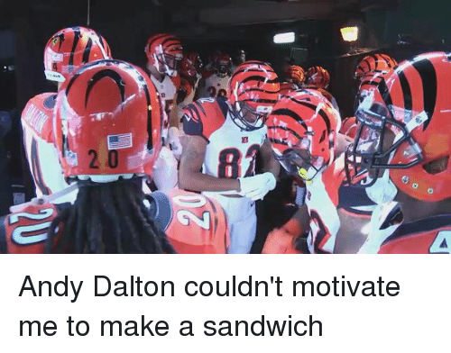 Andy Dalton: o  白 Andy Dalton couldn't motivate me to make a sandwich