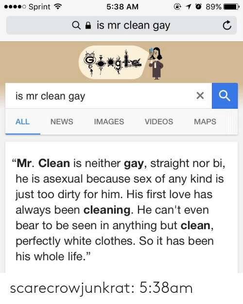"""Anything But: o Sprint  @ 10 89%  5:38 AM  is mr clean gay  Q  is mr clean gay  NEWS  IMAGES  MAPS  ALL  VIDEOS  """"Mr. Clean is neither gay, straight nor bi,  he is asexual because sex of any kind is  just too dirty for him. His first love has  always been cleaning. He can't even  bear to be seen in anything but clean,  perfectly white clothes. So it has been  his whole life."""" scarecrowjunkrat: 5:38am"""