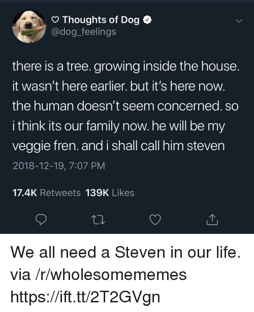 Family, Life, and House: O Thoughts of Dog <  @dog_feelings  there is a tree. growing inside the house  It wasn't here earlier. but it's here now  the human doesn't seem concerned. so  i think its our family now. he will be my  veggie fren. and i shall call him steven  2018-12-19, 7:07 PM  17.4K Retweets 139K Likes We all need a Steven in our life. via /r/wholesomememes https://ift.tt/2T2GVgn