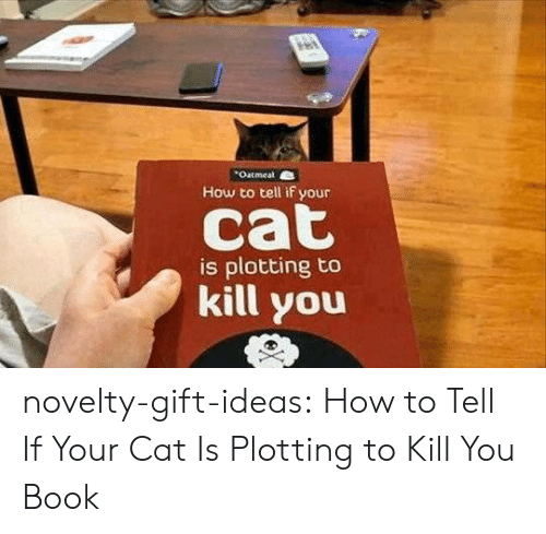 Plotting: Oatmeal  How to tell if your  is plotting to  kill you novelty-gift-ideas:  How to Tell If Your Cat Is Plotting to Kill You Book