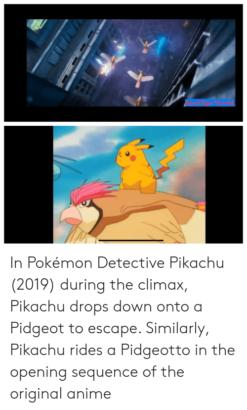 Anime, Pikachu, and Pokemon: Ob In Pokémon Detective Pikachu (2019) during the climax, Pikachu drops down onto a Pidgeot to escape. Similarly, Pikachu rides a Pidgeotto in the opening sequence of the original anime