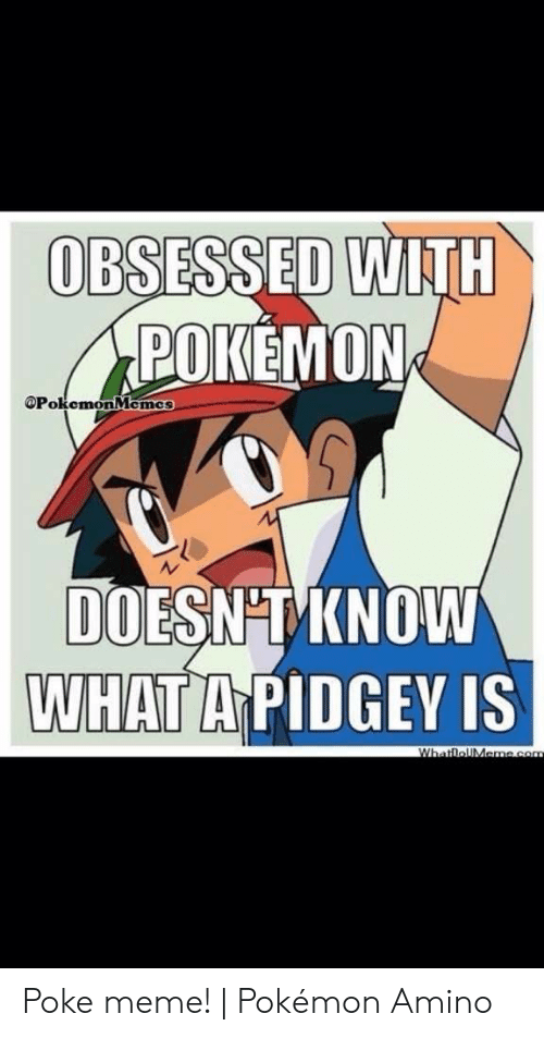 Meme, Pokemon, and Com: OBSESSED WITH  POKEMON  OPokemonMemcs  DOESNT KNOW  WHAT A PIDGEY IS  WhatloUMeme.com Poke meme! | Pokémon Amino