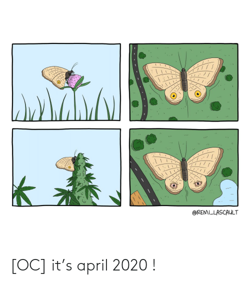 April: [OC] it's april 2020 !