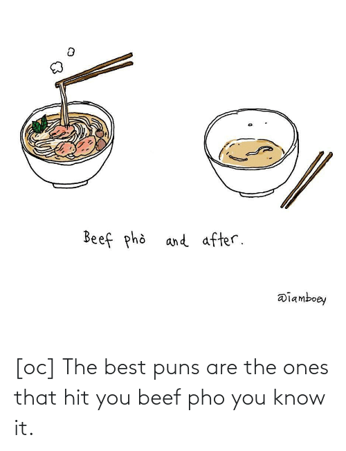 hit: [oc] The best puns are the ones that hit you beef pho you know it.