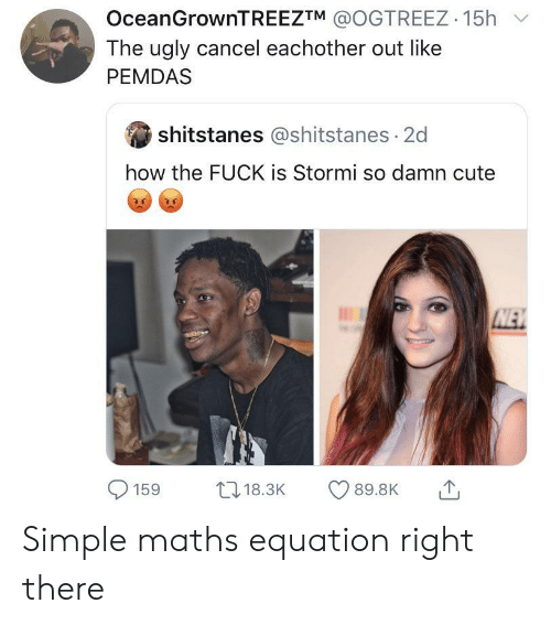 Equation: OceanGrownTREEZTM @OGTREEZ 15h  The ugly cancel eachother out like  PEMDAS  shitstanes @shitstanes 2d  how the FUCK is Stormi so damn cute  NEW  L18.3K  89.8K  159 Simple maths equation right there