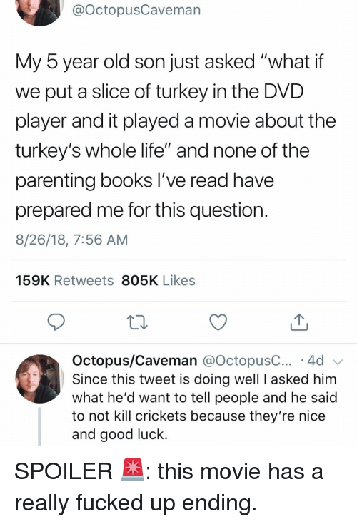 "crickets: @OctopusCaveman  My 5 year old son just asked ""what if  we put a slice of turkey in the DVD  player and it played a movie about the  turkey's whole life"" and none of the  parenting books l've read have  prepared me for this question  8/26/18, 7:56 AM  159K Retweets 805K Likes  Octopus/Caveman @octopusC 4d  Since this tweet is doing well I asked him  what he'd want to tell people and he said  to not kill crickets because they're nice  and good luck. SPOILER 🚨: this movie has a really fucked up ending."