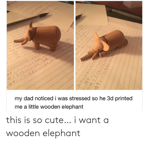 nes: oecs  t  NES  Nes  NO  my dad noticed i was stressed so he 3d printed  me a little wooden elephant  yES  HES  1わたしはまいにち六  四時ごろうちにかえります。  hhleihT this is so cute… i want a wooden elephant