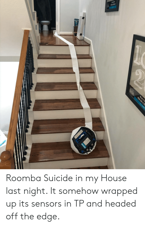 Roomba: OEOOR  16 in x 2  40.6 cm x50  BEL MONT Roomba Suicide in my House last night. It somehow wrapped up its sensors in TP and headed off the edge.