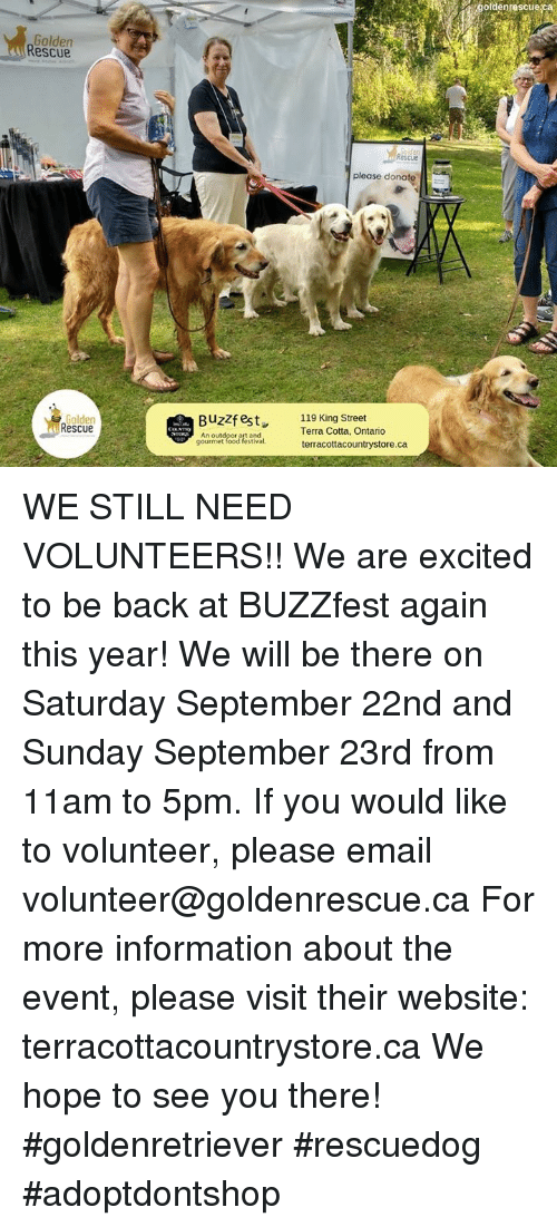 Ofdenrescue Ca Golden Rescue Please Donate Golden Rescue Buzzfest