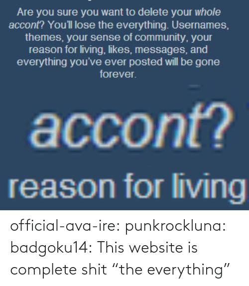 "Complete: official-ava-ire: punkrockluna:  badgoku14:  This website is complete shit  ""the everything"""