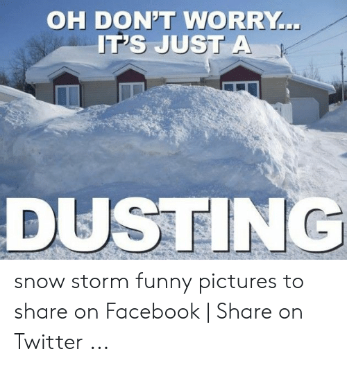Facebook, Funny, and Twitter: OH DON'T WORRY  IT's JuST A  DUSTING snow storm funny pictures to share on Facebook | Share on Twitter ...