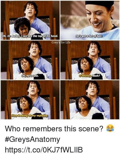 Cute, Head, and Life: oh, Dr BalleyI cansce the topofhis head.  Hers gotalot othalir  Grey's for Life  Oh, he's cute  OMolley Yeah?  oplooking atmy vajayjay Who remembers this scene? 😂 #GreysAnatomy https://t.co/0KJ7fWLIlB