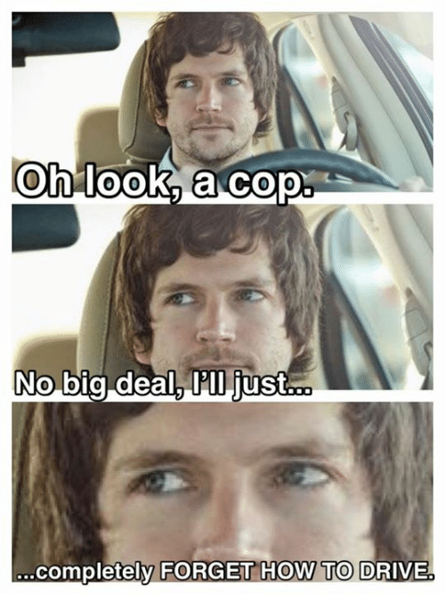 Dank, Drive, and How To: Oh look, a cop  No big deal, P'll just...  .completely FORGET HOW TO DRIVE