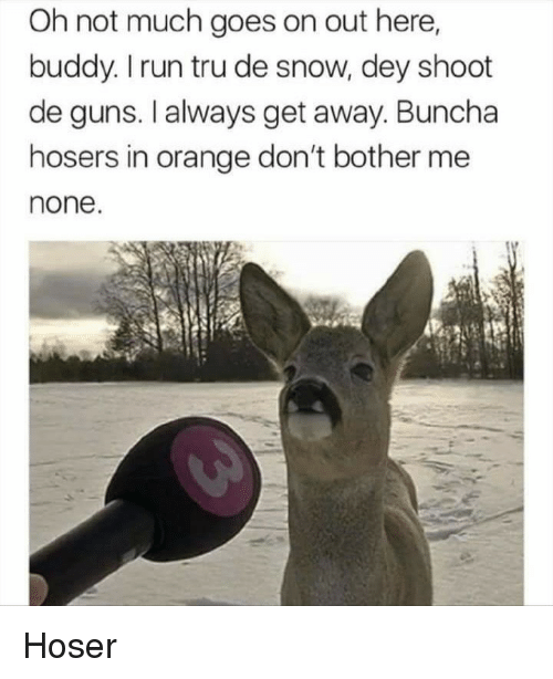 Guns, Run, and Orange: Oh not much goes on out here,  buddy. I run tru de snow, dey shoot  de guns. I always get away. Buncha  hosers in orange don't bother me  none. Hoser