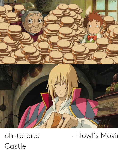 Tumblr, Blog, and Castle: OH-TOTORO   OH-TOTORO oh-totoro: ハウルの動く城 · Howl's Moving Castle