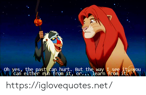 The Past: Oh yes, the past can hurt. But the way I see itayou  can either mun from it, or..learn from it https://iglovequotes.net/