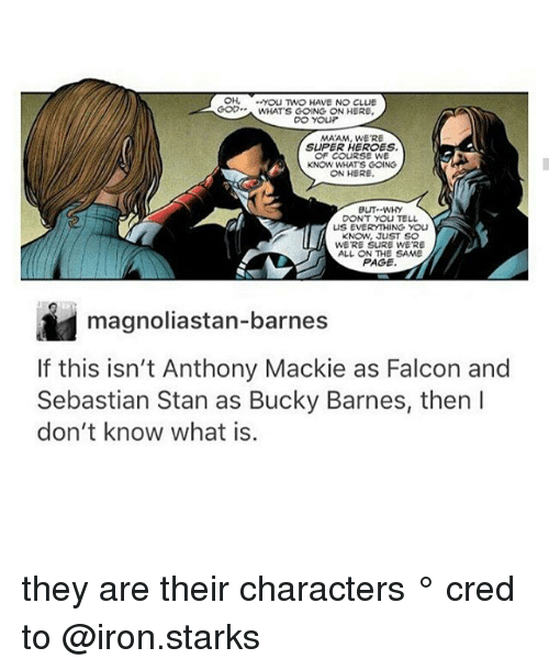 Stanning: OH, yoU TWO HAVE NO CLUE  GOWHATS GOING ON HERE  MAAM, WE'RE  SUPER HEROES  OF CoURSE WE  KNOW WHATS COING  ON HERE  BUT--WHY  DONT YOU TELL  US EVERYTHING YOU  KNOW, JUST SO  WE'RE SURE WE'RE  ALL ON THE SAME  PAGE  magnoliastan-barnes  If this isn't Anthony Mackie as Falcon and  Sebastian Stan as Bucky Barnes, then l  don't know what is.  8 they are their characters ° 《cred to @iron.starks 》