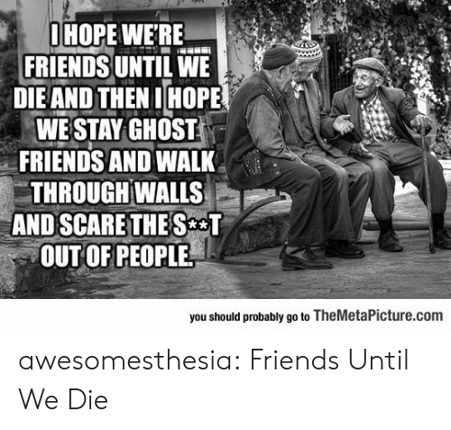 The S: OHOPE WERE  FRIENDS UNTIL WE  DIEAND THEN IHOPE  WE STAY GHOST  FRIENDS AND WALK  THROUGH WALLS  AND SCARE THE S T  OUT OF PEOPLE  you should probably go to TheMetalPicture.com awesomesthesia:  Friends Until We Die