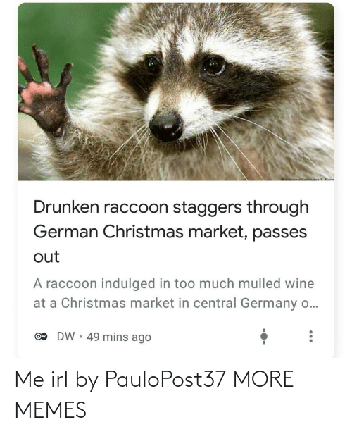 market: oictureNnwidoa/ Klime  Drunken raccoon staggers through  German Christmas market, passes  out  A raccoon indulged in too much mulled wine  at a Christmas market in central Germany o...  DW • 49 mins ago  Ow Me irl by PauloPost37 MORE MEMES
