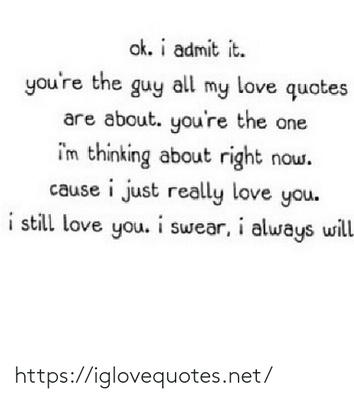 The Guy: ok. i admit it.  you're the guy  my love quotes  all  are about. you're the one  i'm thinking about right now.  cause i just really love you.  i still love you. i swear, i always will https://iglovequotes.net/