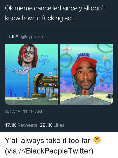 Blackpeopletwitter, Fucking, and Meme: Ok meme cancelled since y'all don't  know how to fucking act  LILY. @lilypump  3/17/18, 11:16 AM  17.1K Retweets 29.1K Likes <p>Y'all always take it too far 😤 (via /r/BlackPeopleTwitter)</p>
