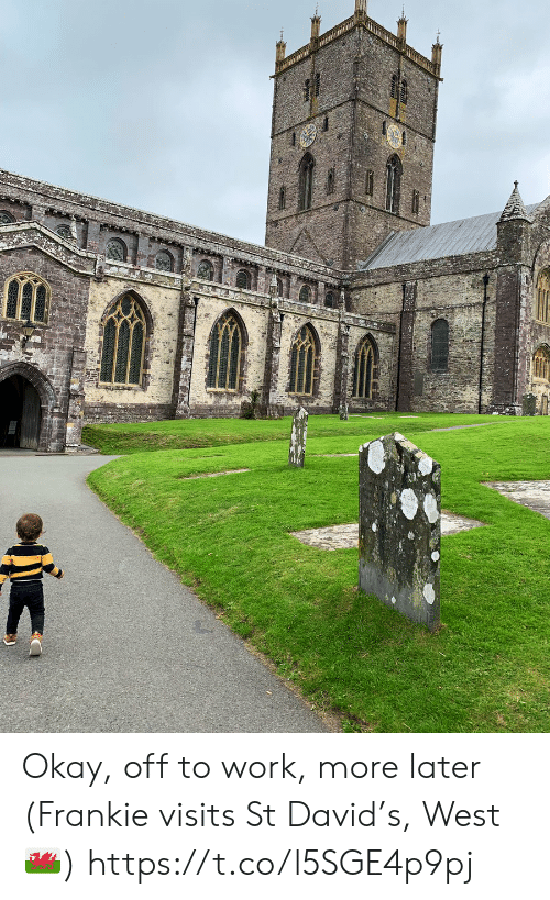 Memes, Work, and Okay: Okay, off to work, more later  (Frankie visits St David's, West 🏴) https://t.co/l5SGE4p9pj