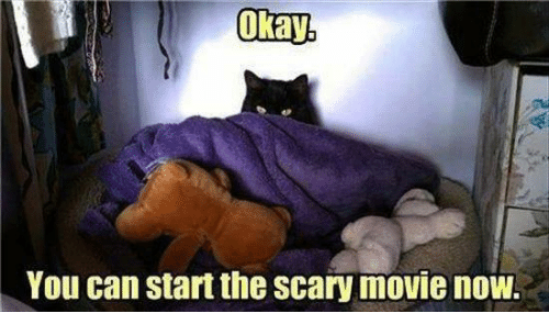 scari movie: Okay  You can start the scary movie now.