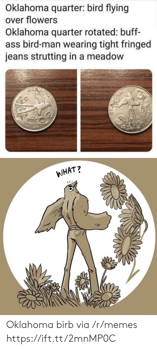 jeans: Oklahoma quarter: bird flying  over flowers  Oklahoma quarter rotated: buff-  ass bird-man wearing tight fringed  jeans strutting in a meadow  2099  WHAT? Oklahoma birb via /r/memes https://ift.tt/2mnMP0C