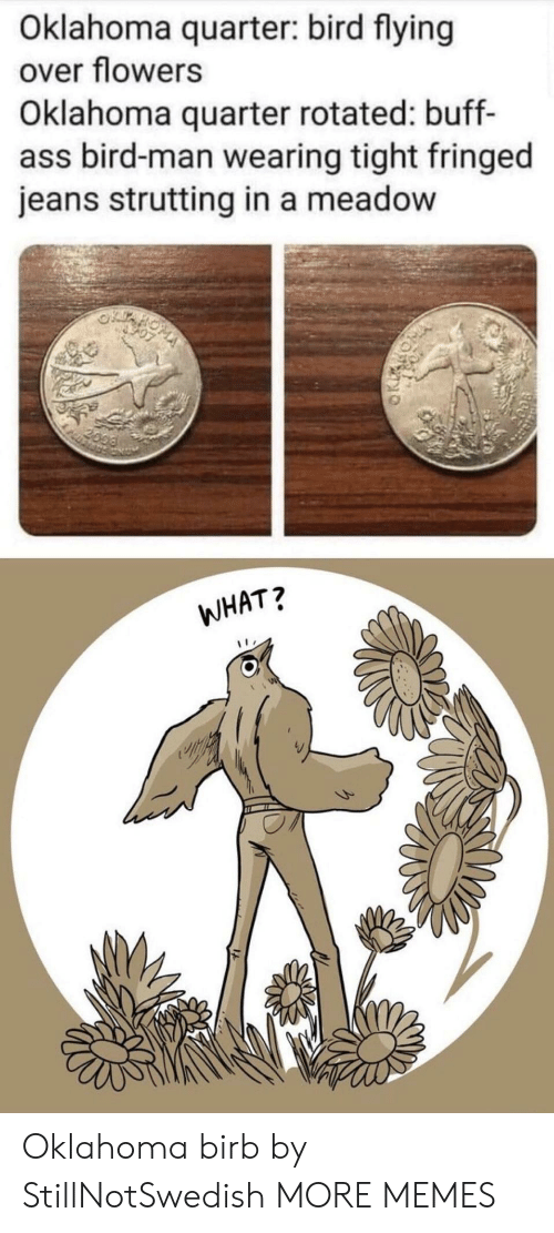 jeans: Oklahoma quarter: bird flying  over flowers  Oklahoma quarter rotated: buff-  ass bird-man wearing tight fringed  jeans strutting in a meadow  2099  WHAT? Oklahoma birb by StillNotSwedish MORE MEMES