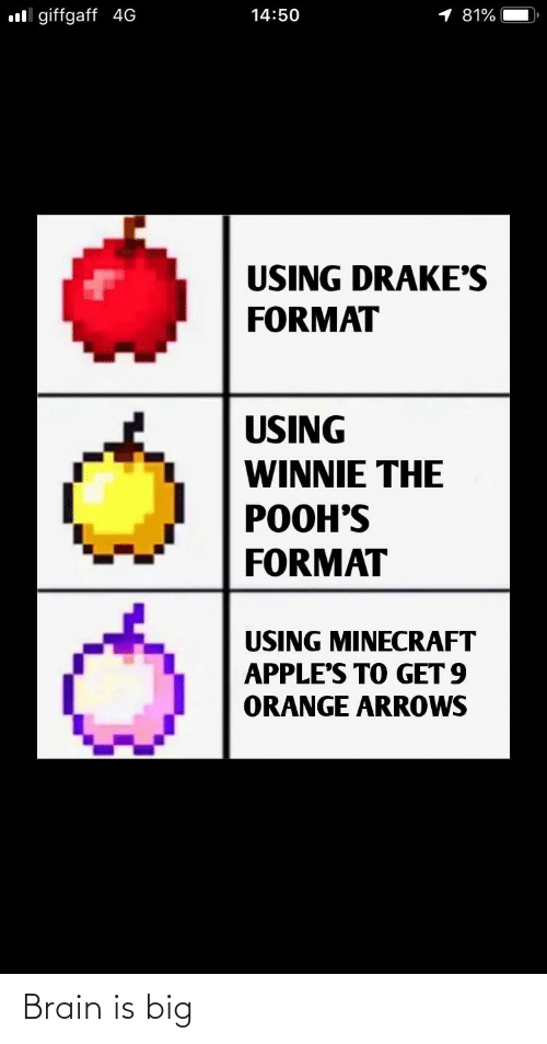 Minecraft, Brain, and Orange: oll giffgaff 4G  14:50  1 81%  USING DRAKE'S  FORMAT  USING  WINNIE THE  POOH'S  FORMAT  USING MINECRAFT  APPLE'S TO GET 9  ORANGE ARROWS Brain is big