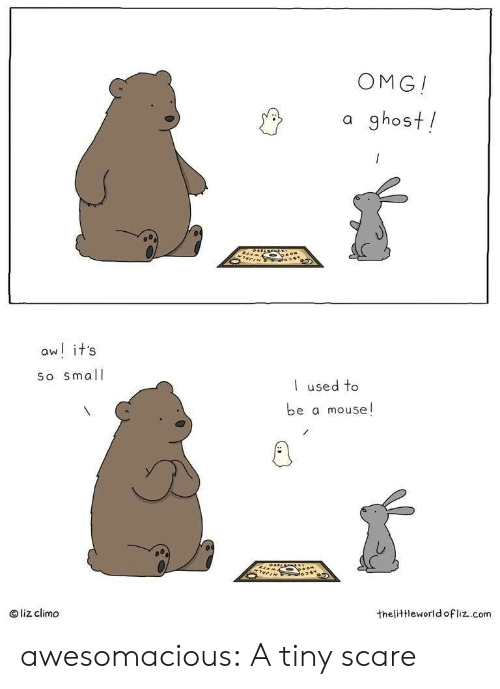 liz: OMG!  a ghost!  aw! it's  So small  used to  be a mouse!  liz climo  thelittleworld ofliz.com awesomacious:  A tiny scare