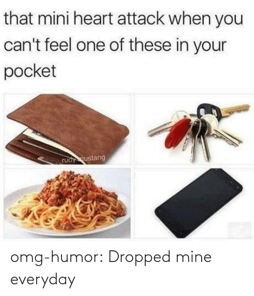 Everyday: omg-humor:  Dropped mine everyday