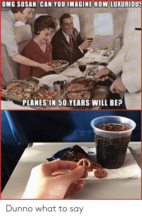planes: OMG SUSAN, CAN YOU IMAGINE HOw LUXURIOUS  PLANES IN 50 YEARS WILL BE? Dunno what to say