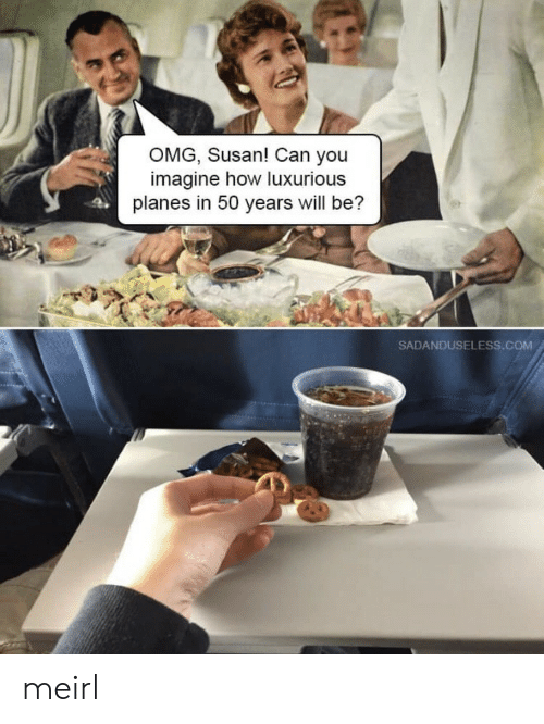 planes: OMG, Susan! Can you  imagine how luxurious  planes in 50 years will be?  SADANDUSELESS.COM meirl