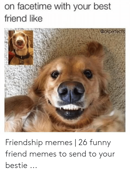 Best Friend, Facetime, and Funny: on facetime with your best  friend like  @okperfects Friendship memes   26 funny friend memes to send to your bestie ...